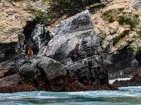 formação de rocha marrom ao lado do corpo d'água durante o dia
