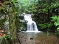 малък водопад в гората
