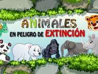 Animaux exotiques