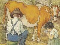 není nad čerstvé kravské mléko