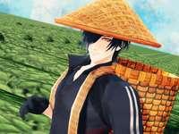 Mitsu em um campo
