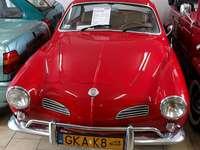 Muzeul Volkswagen din Pępowo