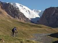 мъж в синьо яке, каране на велосипед на поле със зелена трева