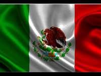 bandeira tricolor.