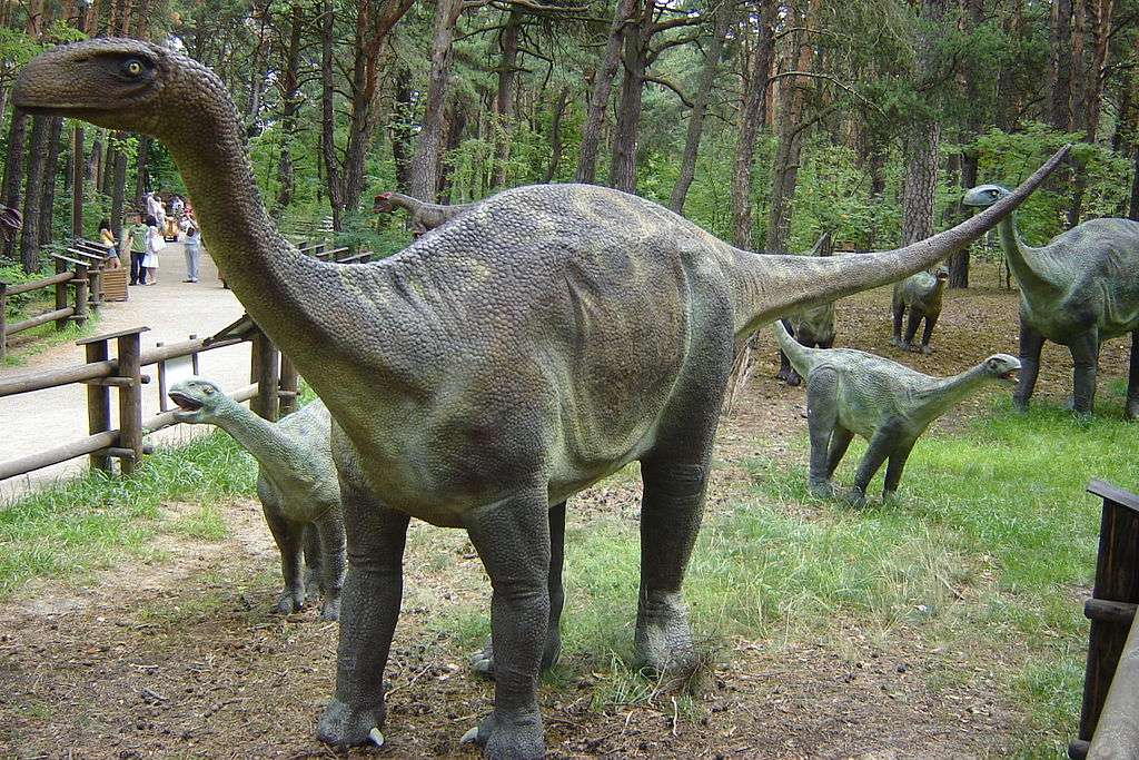 Πάρκα δεινοσαύρων στην Πολωνία -  (5×4)