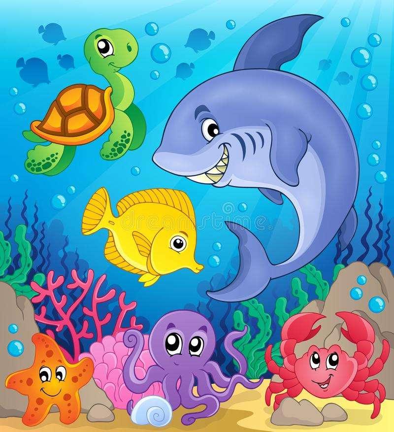 Puzzle animale marine 1 (2×3)