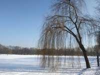 Téli áradás