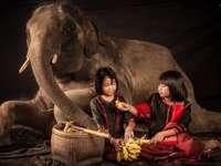 éléphant et enfants