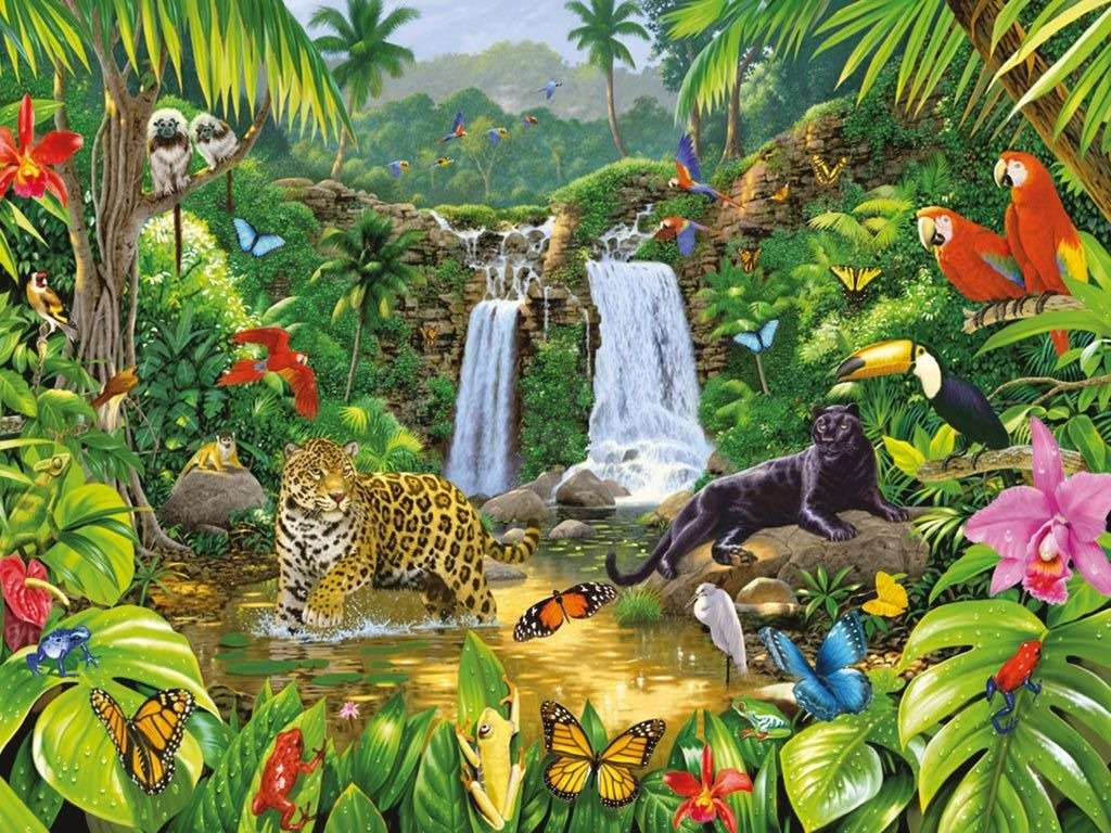 RAIN FOREST - ASSEMBLE THE NATURAL SCIENCE PUZZLE (12×9)