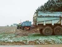 бял и зелен полезен камион на поле със зелена трева