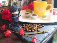 Mitsu, flowers and snack