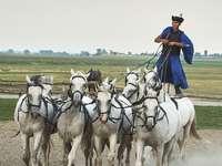 Magyar lovasok a pusztai pusztán
