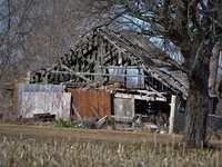 braunes Holzhaus in der Nähe von kahlen Bäumen während des Tages