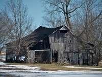 hnědý dřevěný dům poblíž holých stromů během dne