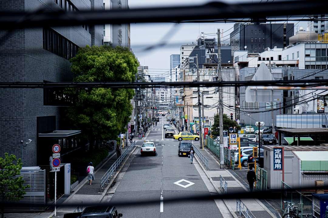 auto su strada durante il giorno - Nishi Ward, Osaka, Giappone (9×6)