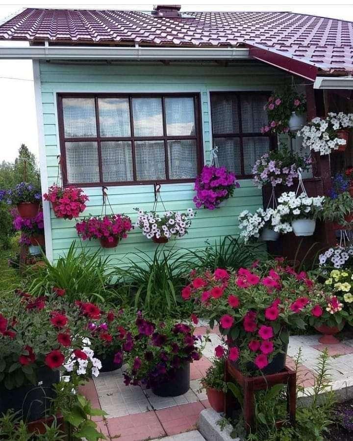Kis kert - Színes háztáji kert (13×17)
