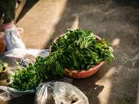 zelené a červené chilli na hnědém plastovém koši
