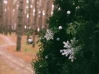 palline di natale bianco su albero di natale verde