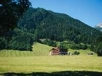 braunes Holzhaus auf grüner Wiese nahe grünem Berg