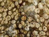 fragmenty bílého a hnědého kamene