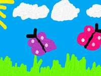 fjärilar på våren