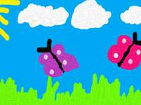 butterflies in spring