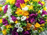 The bouquet of freesias