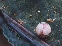 bílý a červený fotbalový míč na zelené trávě