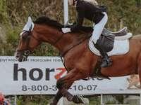homem de jaqueta preta e branca cavalgando cavalo marrom