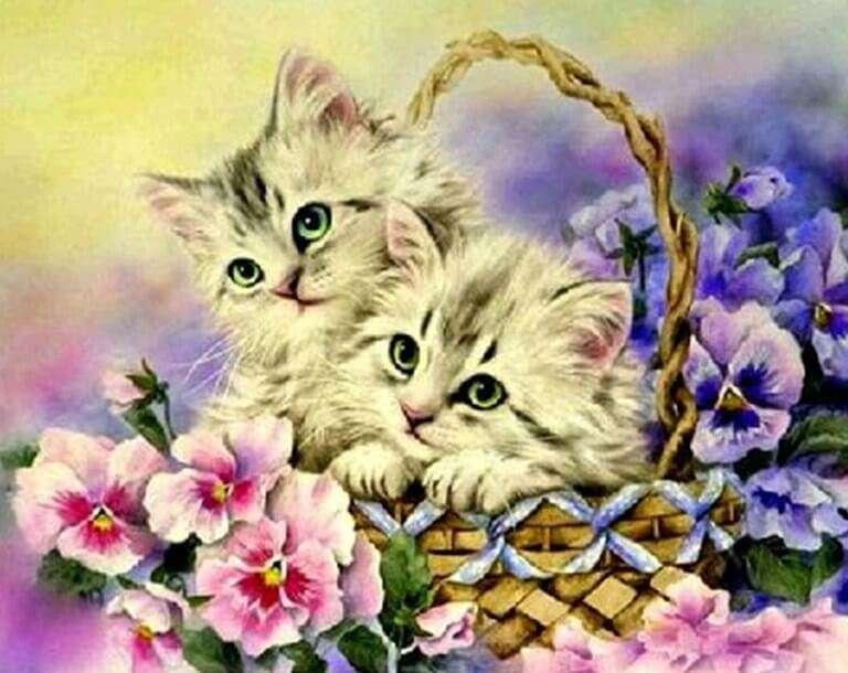 chatons dans le panier - m (12×10)