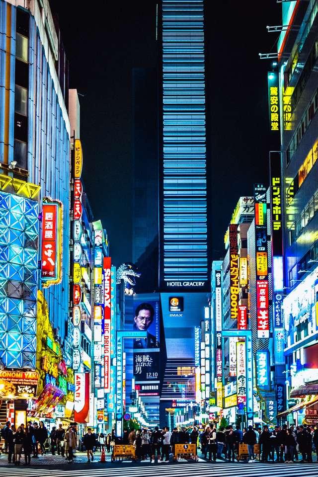 Tokyo, Japonsko - Ulice Tokia - Japonsko (9×14)