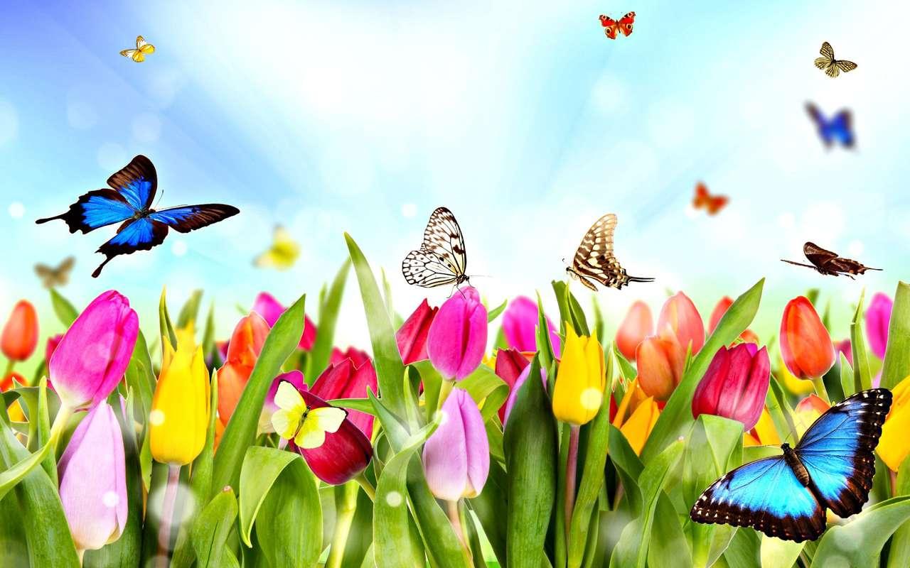 despertar da primavera - despertar da primavera graficamente (14×9)