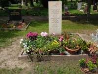 Grab auf dem Marcusfriedhof