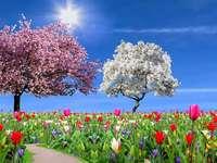 Es ist schon Frühling