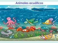Υδρόβια ζώα
