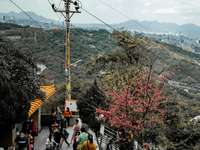 pessoas andando na rua perto de árvores e montanhas