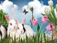 konijnen in tulpen