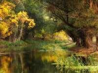 Naturlandschaft in Ungarn