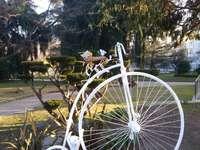 In Parco del Valentino