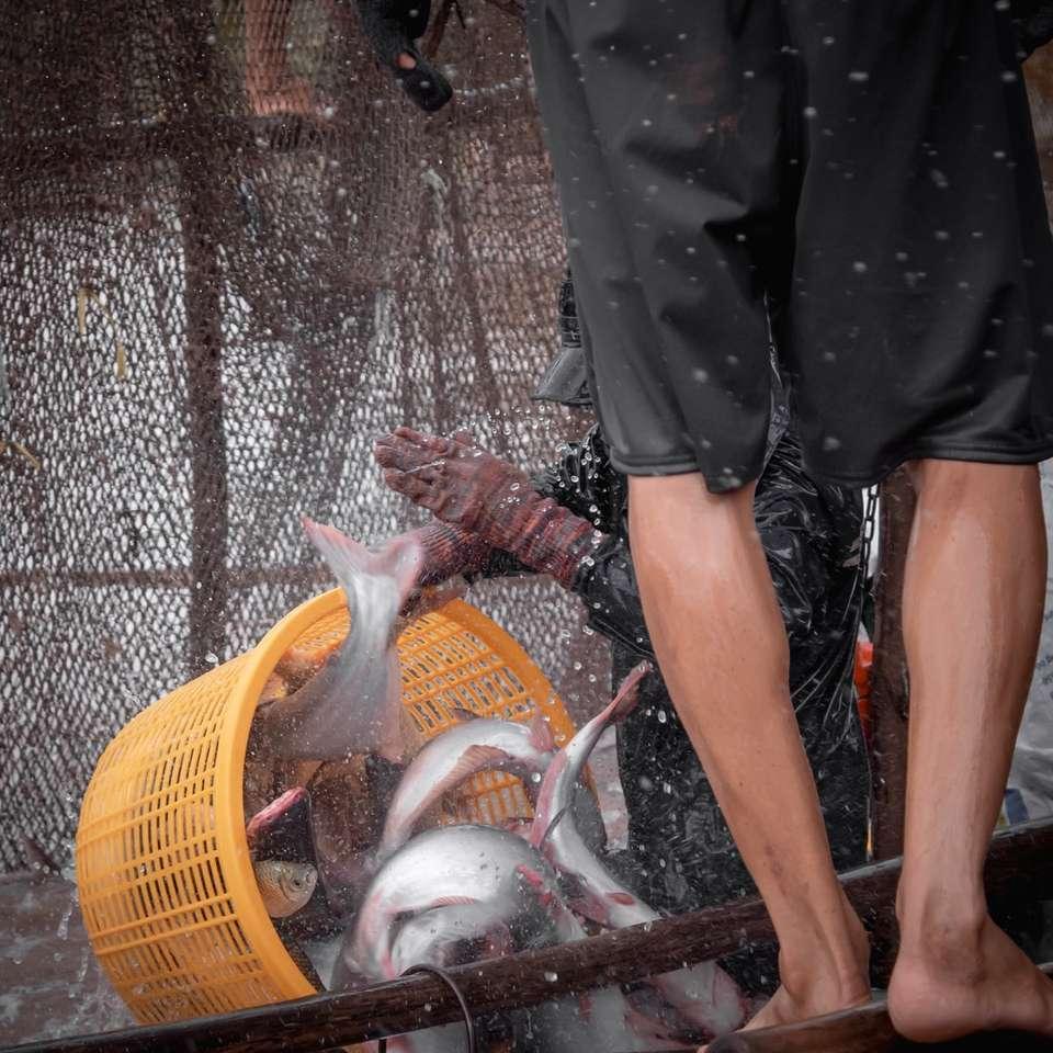 pessoa de short preto em pé ao lado de uma cesta de tecido marrom - Como é trabalhar em uma fazenda de peixes no Vietnã. Três pessoas trabalham em sincronia para pegar, levantar e transportar grandes bagres até o barco. . Delta do Mekong, Vietnã (8×8)