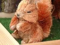 Putzi, o esquilo