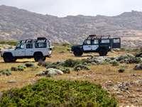 fehér és fekete dzsip wrangler zöld füves területen