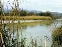 Натуралистичен оазис на Персано Салерно Италия