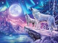 Lobos y la luna