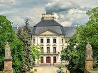 Πανεπιστήμιο Szakszervezet στην Ουγγαρία