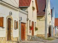 Regione vinicola Tokaj in Ungheria