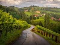 wijngaarden, weg