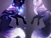 Two galaxy wolves