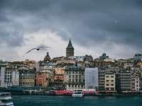 skyline della città con un uccello in volo sopra durante il giorno