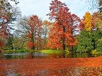 Szeged park ősszel Magyarországon